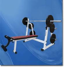 Weights: An Essential Element of Professional Fitness Equipment