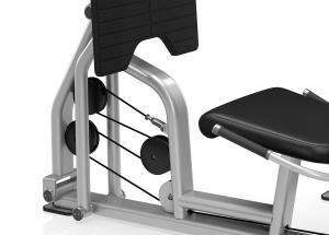 Precor CO10ES Leg Press/Calf Extension